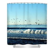 Billowing White Waves And Seagulls Shower Curtain