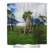 Billy Goat At The Lookout Post Shower Curtain