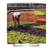 Biltmore Gardener Shower Curtain