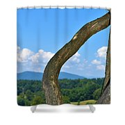 Biltmore Terrace  Shower Curtain