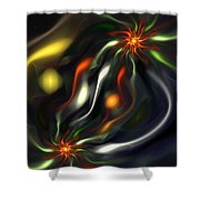 Binary Attractors Shower Curtain