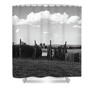 Bines Shower Curtain