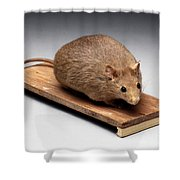 Bioengineered Obese Mouse, 1998 Shower Curtain