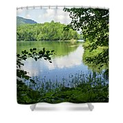 Biogradska Gora Forest  Shower Curtain