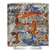 Biography Of A Wall 17 Shower Curtain