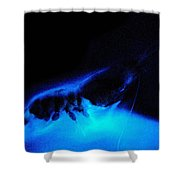 Bioluminescent Cloud Released By Shrimp Shower Curtain
