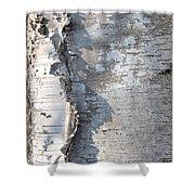 Birch Abstract 2 Shower Curtain