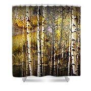 Birch Bark And Trees Abstract Shower Curtain