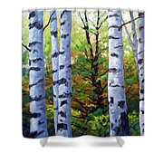 Birch Buddies Shower Curtain