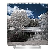 Birch Cluster II Shower Curtain