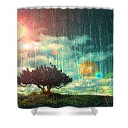 Birch Dreams Shower Curtain