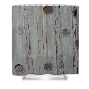 Birch - Fog 2 Shower Curtain