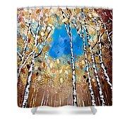 Birch Forest Shower Curtain