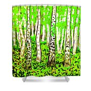 Birch Forest, Painting Shower Curtain