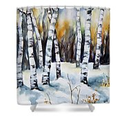 The White Of Winter Birch Shower Curtain