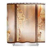 Birch Peel Tryptich Shower Curtain