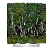 Birch Tree Panorama Shower Curtain