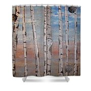 Birch Trees - Clouds Shower Curtain