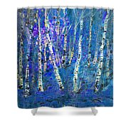 Birch Trees 3 Shower Curtain