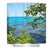 Birch Trees Above Lake Superior Off North Country Trail In Pictured Rocks National Lakeshore-mi Shower Curtain