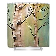 Birch Trees Color Pencil  Shower Curtain