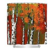 Birch Trees In An Autumn Forest Shower Curtain