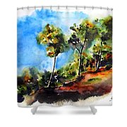 Birch Trees At Swallow Falls Shower Curtain