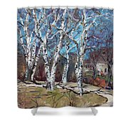 Birch Trees Next Door Shower Curtain