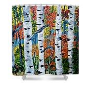 Birch Tree's Shower Curtain