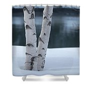 Birch Twins In Snow Shower Curtain