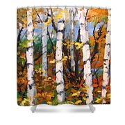 Birches 03 Shower Curtain