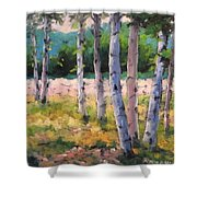 Birches 04 Shower Curtain