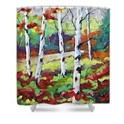 Birches 07 Shower Curtain