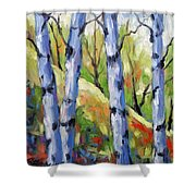Birches 09 Shower Curtain