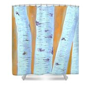 Birches #3 Shower Curtain