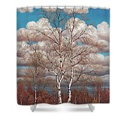Birches In The Spring Shower Curtain