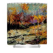 Birchtrees 459090 Shower Curtain
