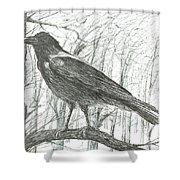 Bird, 2011 Shower Curtain