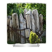 Bird And Pilings Shower Curtain