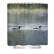 Bird Art Loons - Into The Light Shower Curtain