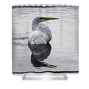 Bird Bath 4619 Shower Curtain