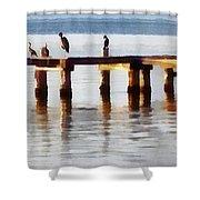 Bird Dock At Sunset Shower Curtain