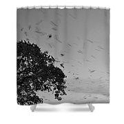 Bird En Route Shower Curtain