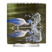Bird Fishing In Lake Shower Curtain