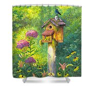 Bird House And Bluebird  Shower Curtain