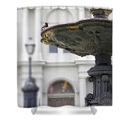Bird In A Fountain Shower Curtain