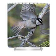 Bird In Action 2 Shower Curtain