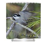 Bird In Action Shower Curtain