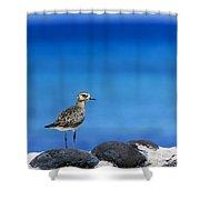 Bird In Blue Shower Curtain