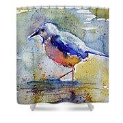 Bird In Lake Shower Curtain